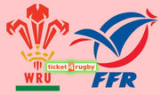 Six Nations Wales v France