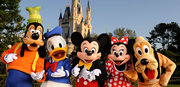 Get the Disneyland Single Tickets